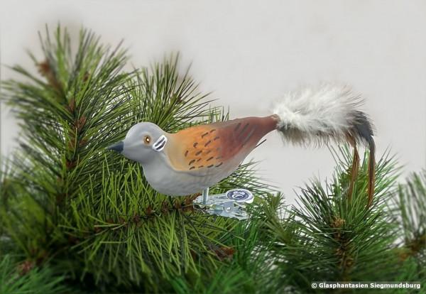 Turteltaube aus Glas, Naturvogel bemalter Christbaum-Schmuck aus Glas